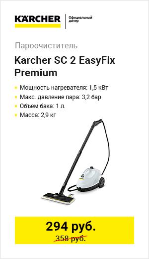 Паровики Karcher
